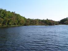 Shoreline Image 6