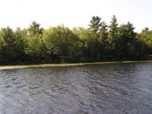 Shoreline Image 8