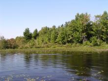 Shoreline Image 10