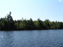 Shoreline Image 12