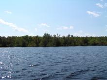 Shoreline Image 14